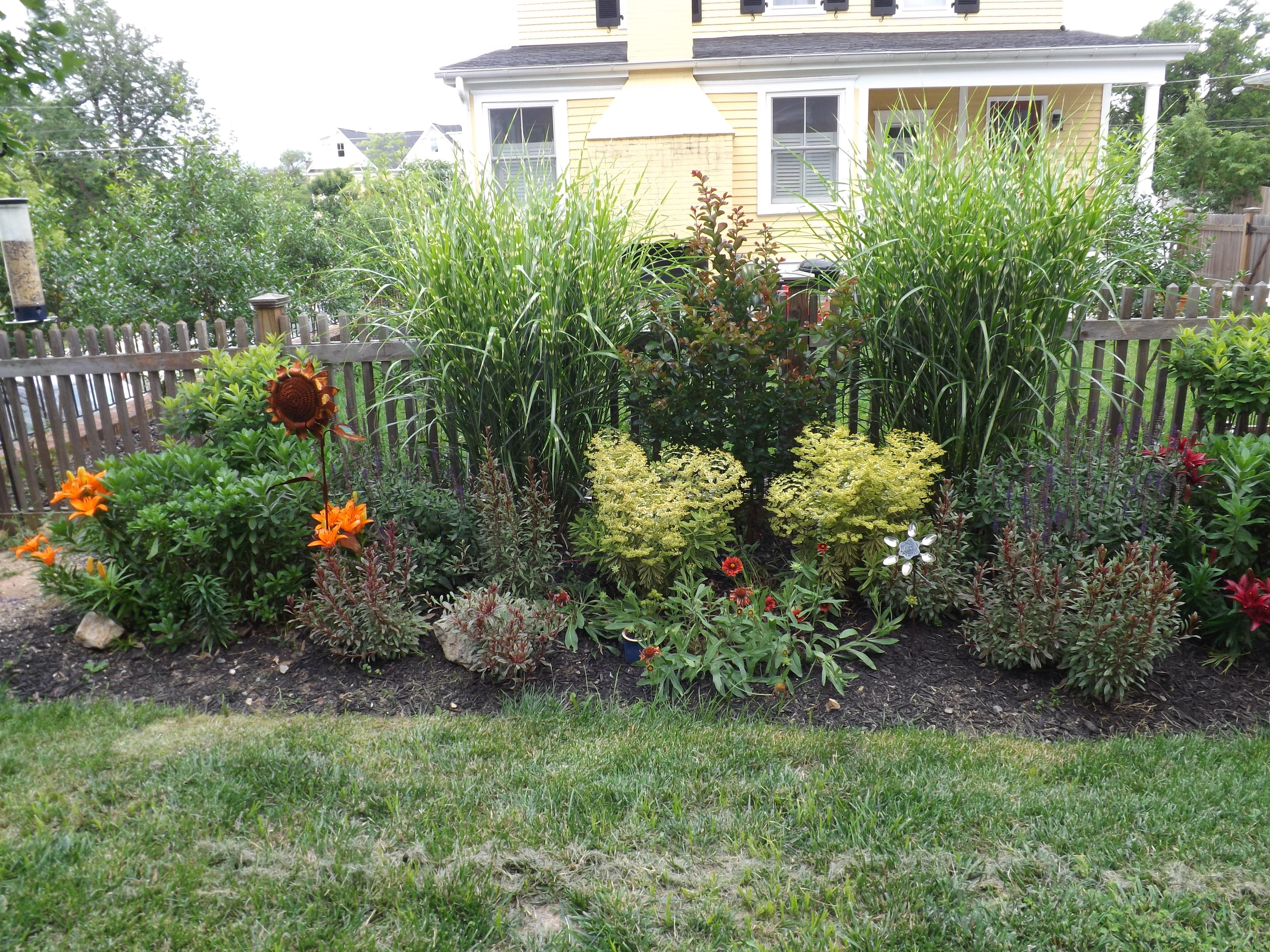 Small gardens perennial pastimes for Small garden